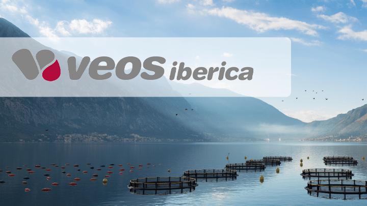 Banner Veos iberica